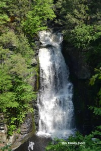 Top 10 places we visited in 2016 - Bushkill Falls