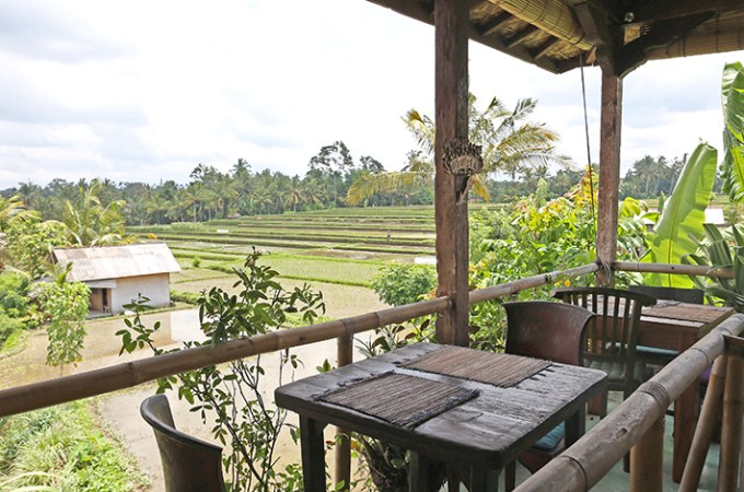 ubud-travel-guide
