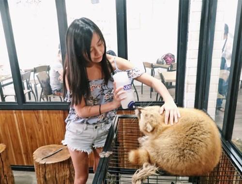Little Zoo Cafe Bangkok Siam Square