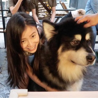 Big Dog Cafe, Bangkok: Play With Dogs That Are Bigger Than Humans!