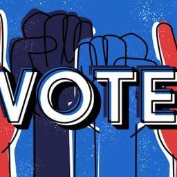 Why vote?