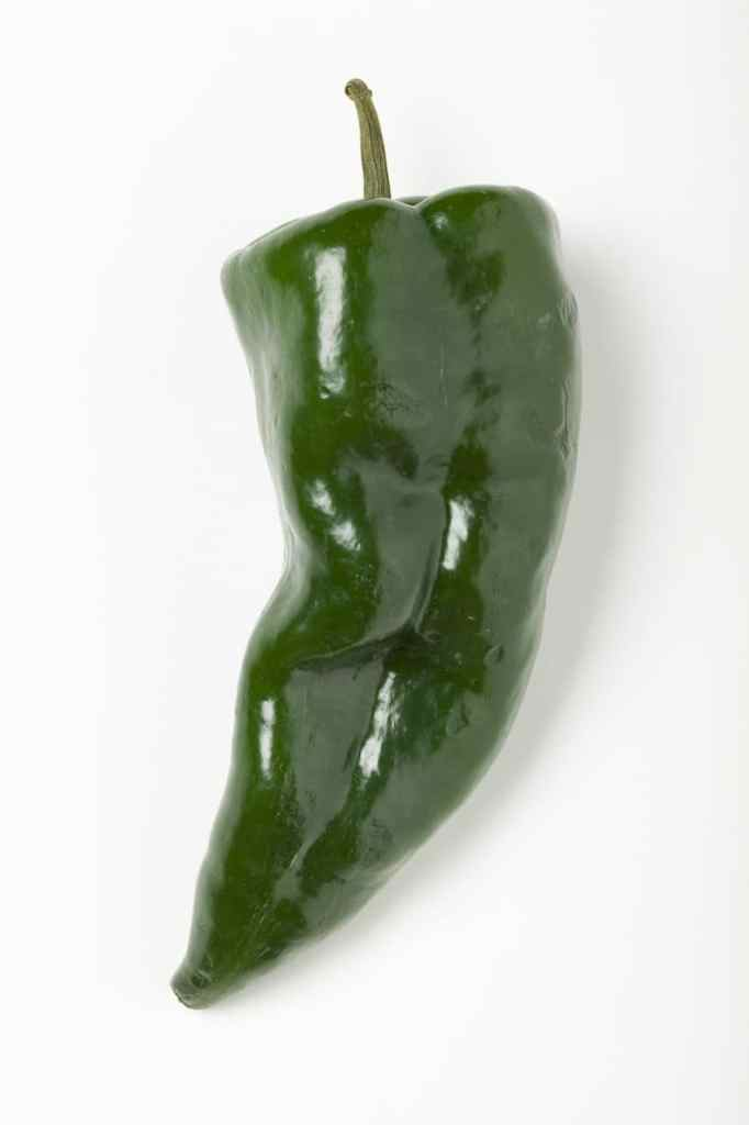 Slightly curly and dark green pepper on white back drop.