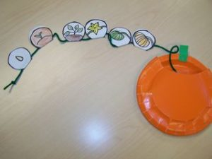 life cycle pumpkin craft