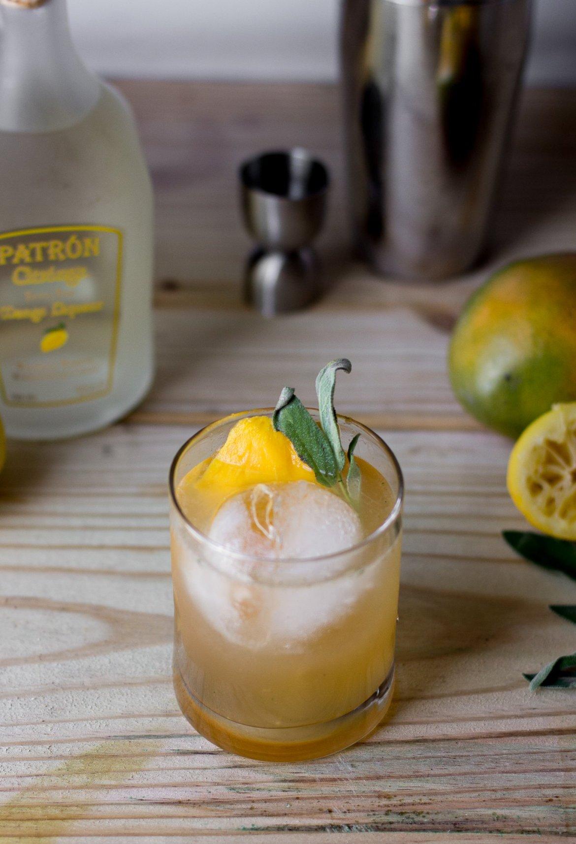 patron, patron tequila, patron margarita of the year, patron margarita, mango margarita