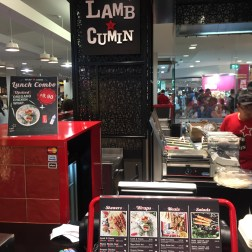 Lamb and Cumin (1)