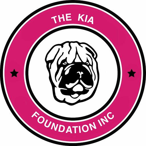 The Kia Foundation Syracuse NY, CNY