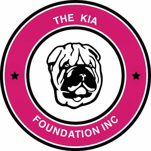 The Kia Foundation Syracuse NY, CNY
