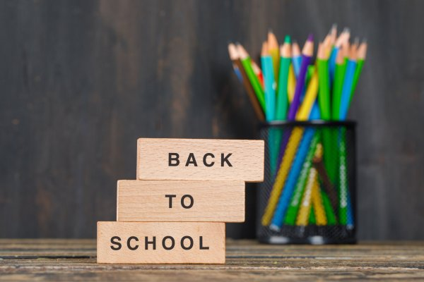 Back to school concept with wooden blocks, pencils in holder on wooden background side view.