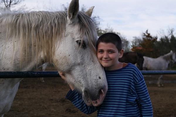馬が合わない