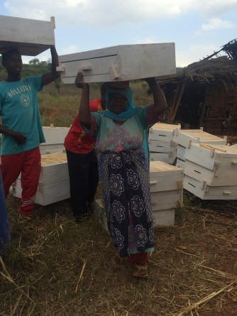 Fatuma M. getting ready to carry the hive