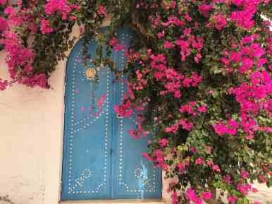 Tunisia — Djerba Street Scene Flowers