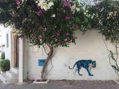 Tunisia — Djerba Street Scene — Street Art