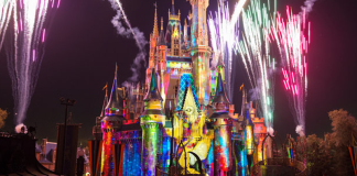 Wishes Fireworks | Walt Disney World