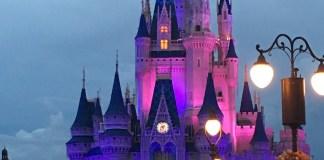 Cinderella Castle at Night   Walt Disney World