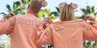 Rose-Gold-Disneyland