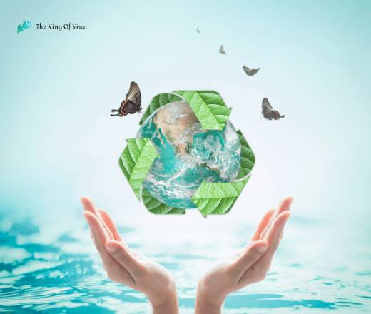 save water poster with green leaf and butterfly