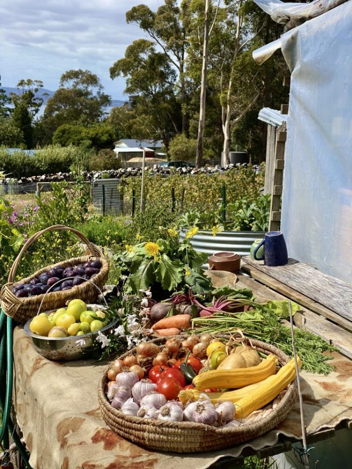 A table laden with colourful fruits and vegetables from Meika's garden.