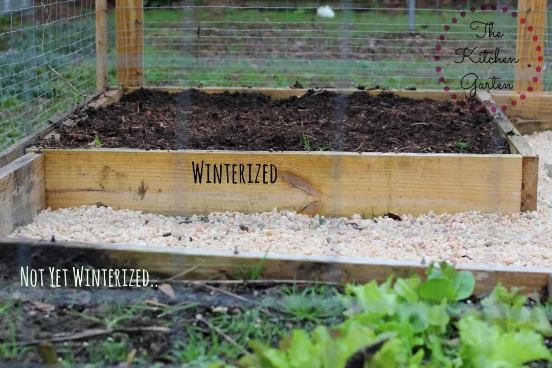 wintergarden1