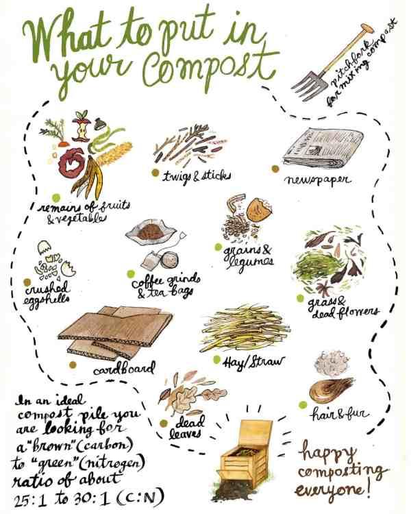 compost sheet 2