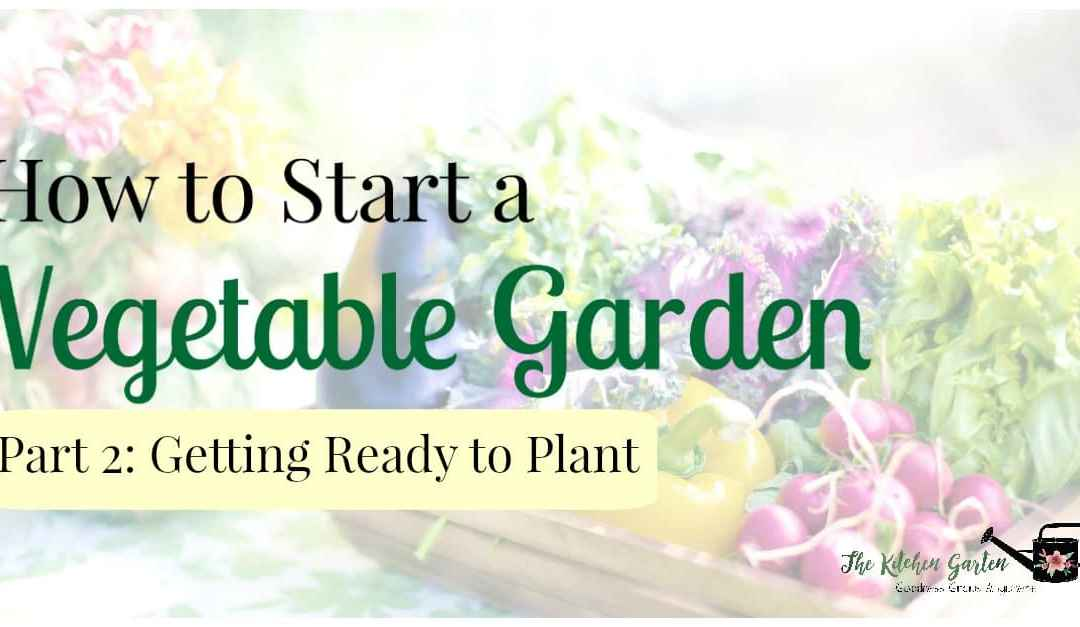 How to Start a Vegetable Garden: Part 2