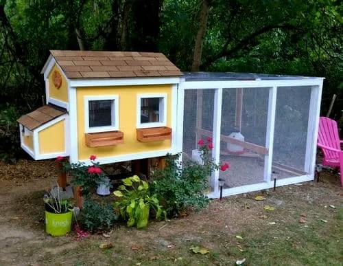 tiny house coop