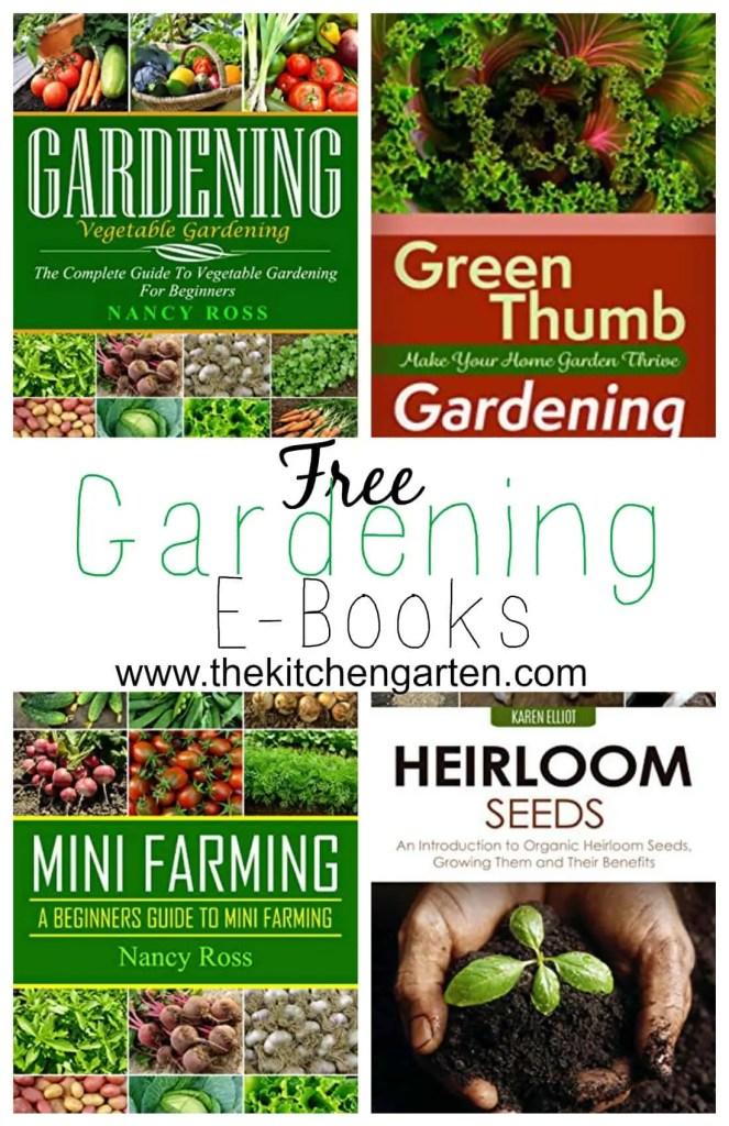 Garden Books Pin