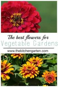 vegetable garden flowers