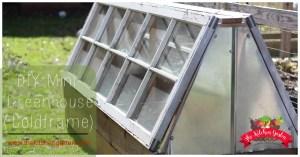 DIY Mini Greenhouse (Coldframe)