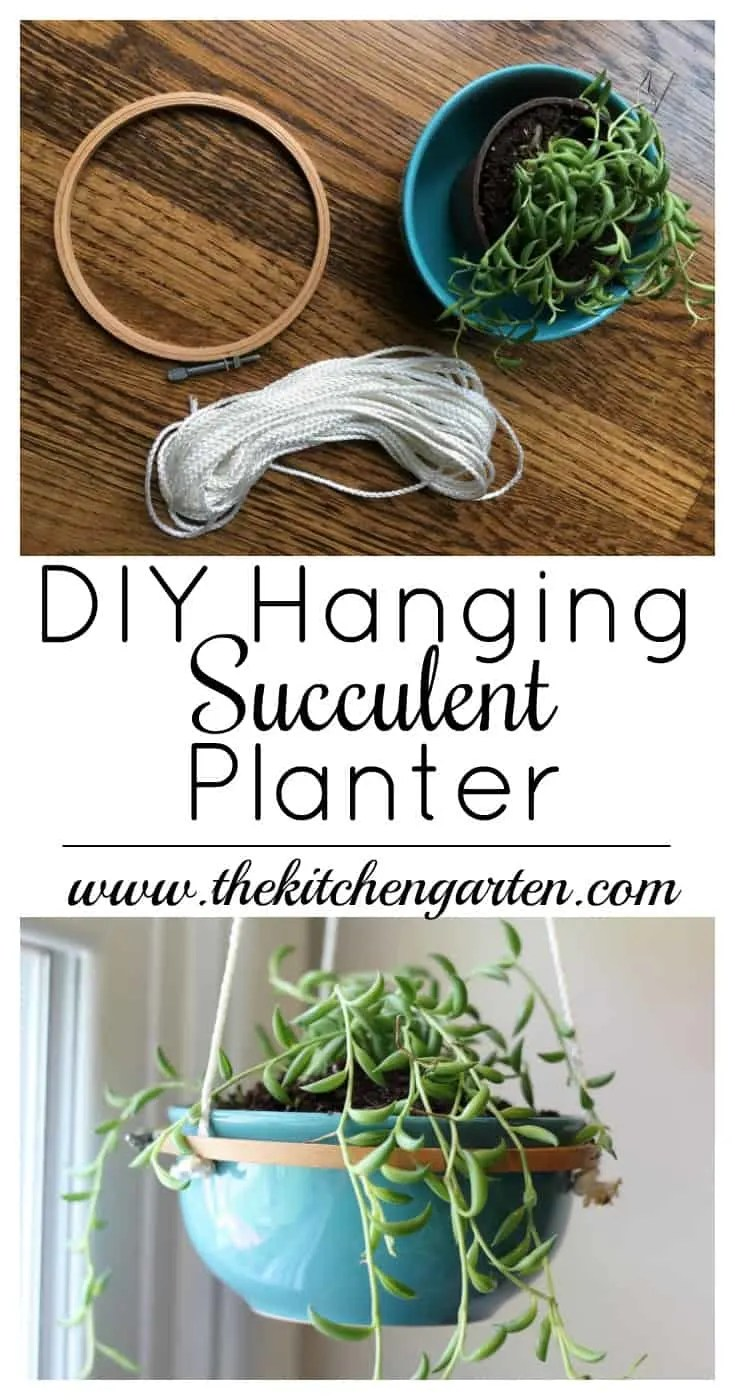 Use a Dollar Tree bowl, embroidery hoop, and some cord to create this simple DIY Hanging Succulent Planter!