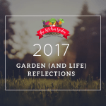Bittersweet Reflections on 2017