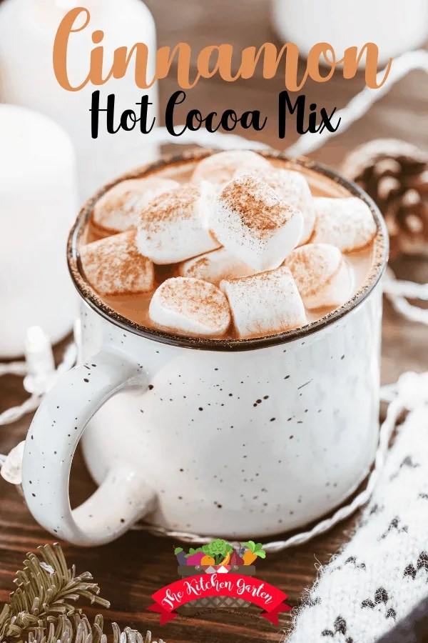 cinnamon hot cocoa mix