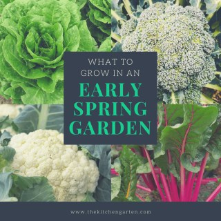 What to Grow in an Early Spring Garden