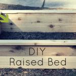 DIY Raised Bed