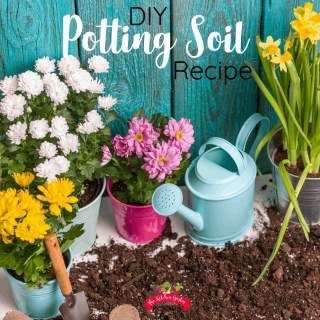 DIY Potting Soil Recipe