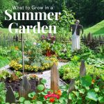 lush garden full of vining plants and bright green plants with a gravel path and scarecrow