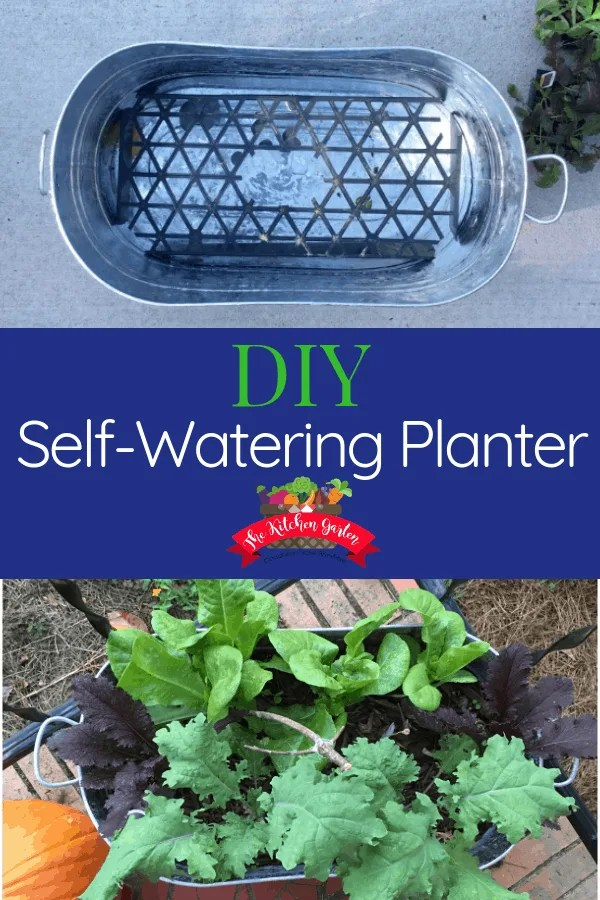 Making a DIY self-watering planter isn't nearly as difficult as it seems! Follow these simple steps to create your own self-watering planter.