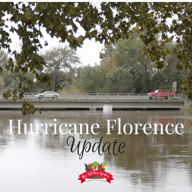 hurricane florence update