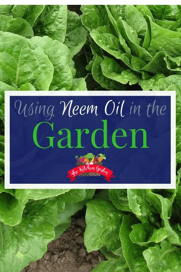 uses for neem oil