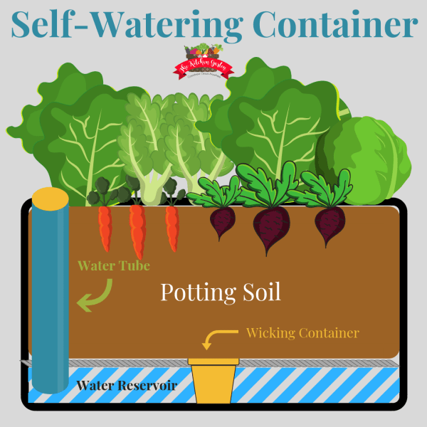 self-watering planter