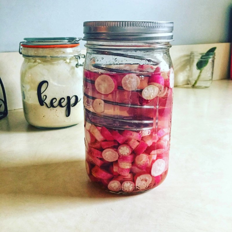 jar of fermented radishes sitting on counter