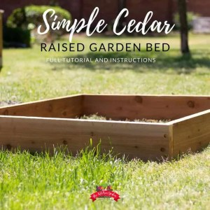 cedar garden bed in grassy lawn