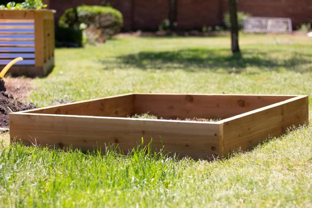 cedar raised bed garden in green grass