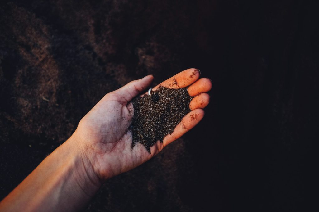soil in a person's hand