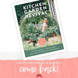 Kitchen Garden Revival Review