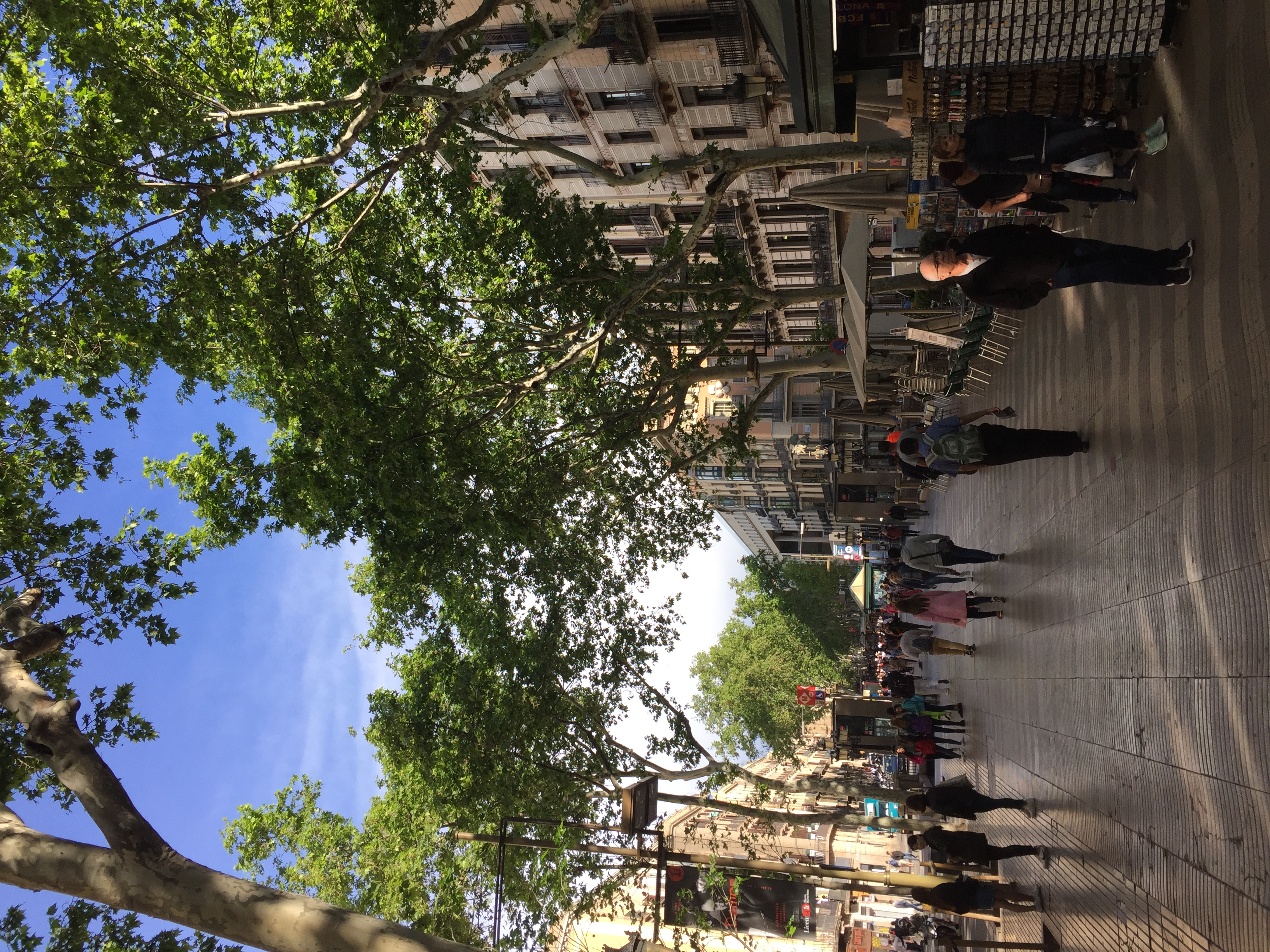 Out of the Kitchen: Barcelona, Spain