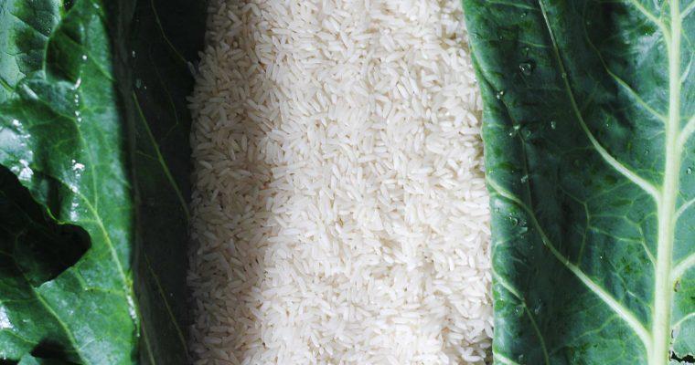 Nigeria: Jollof Rice