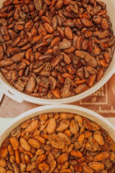 Fèves de cacao fermentées (en bas) et torréfiées (en haut)