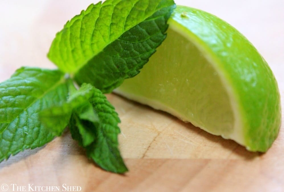 Clean Eating Mojito