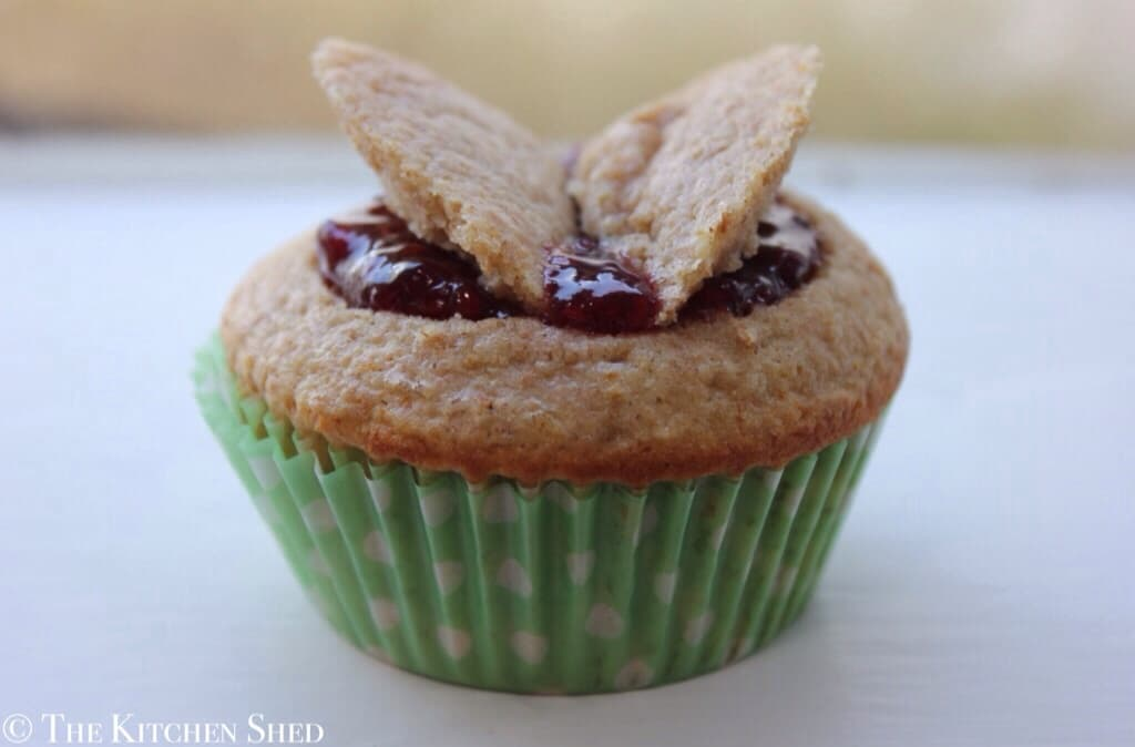Clean Eating Raspberry Vanilla Butterfly Cakes