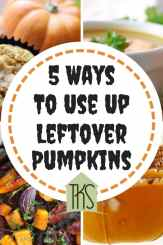 5 Ways To Use Up Leftover Pumpkins 1